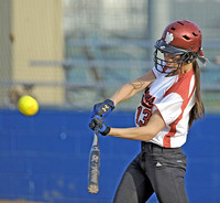 High expectations abound for county???s softball teams