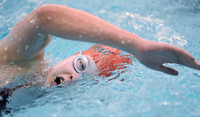 Freshman helps Mt. Vernon swimmers finish third