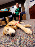 School therapy dog eases stress